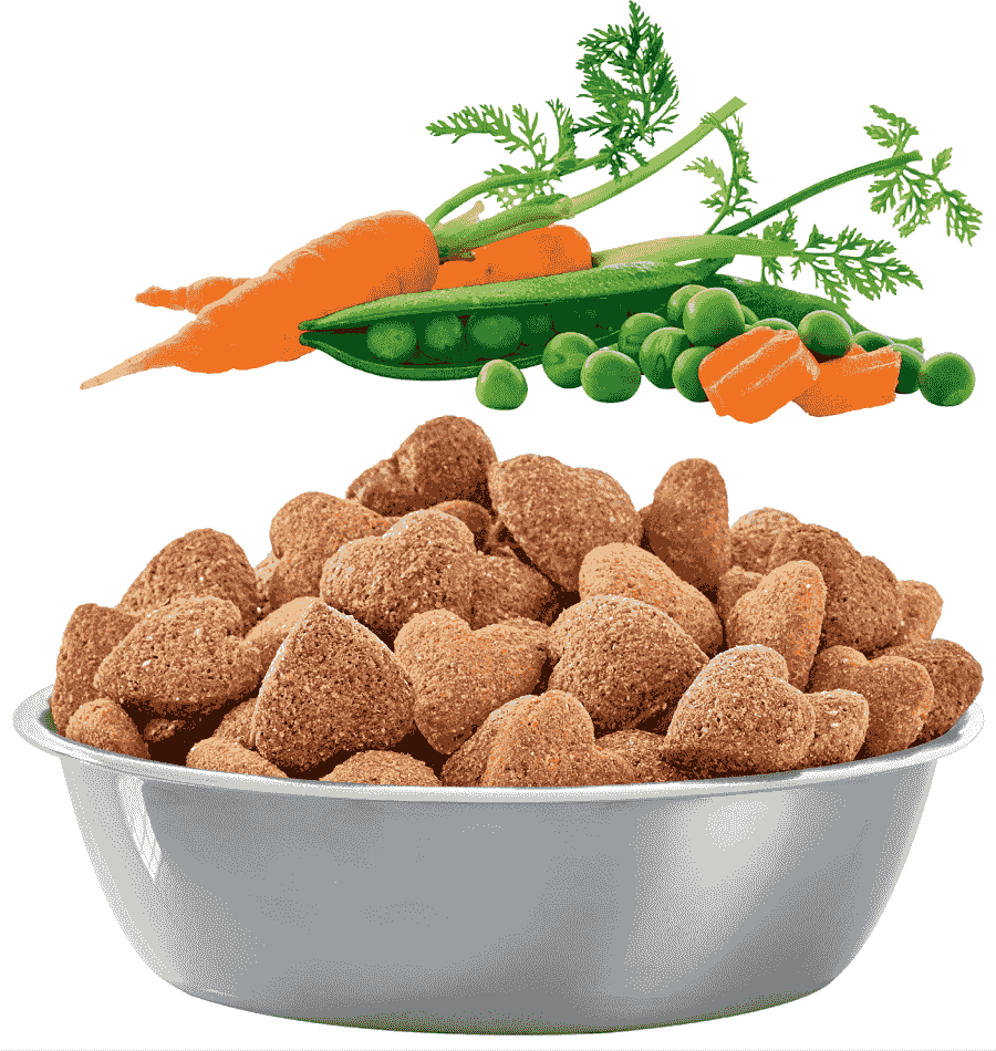 Bobtail South Africa | dogfood with vegetables